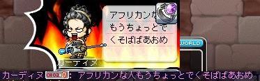 Maple111201_203319.jpg