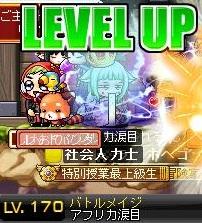 Maple111210_131756.jpg