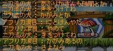 Maple111212_232900.jpg