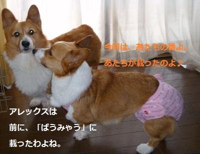 2012_0418_144805-P1130775.jpg