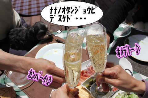 nana-2011-05-3.jpg