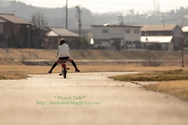 2013-03-16-IMG-0108r.jpg