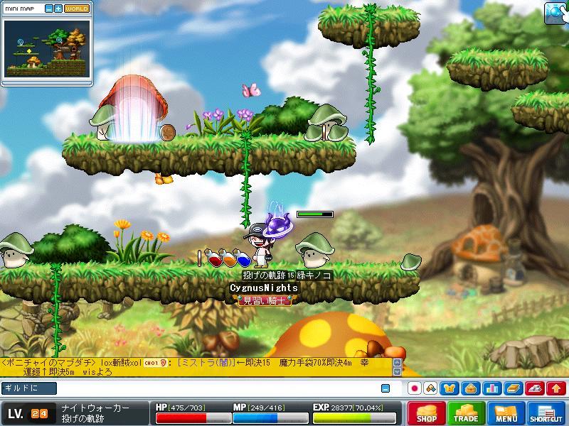 Maple090804_151217.jpg