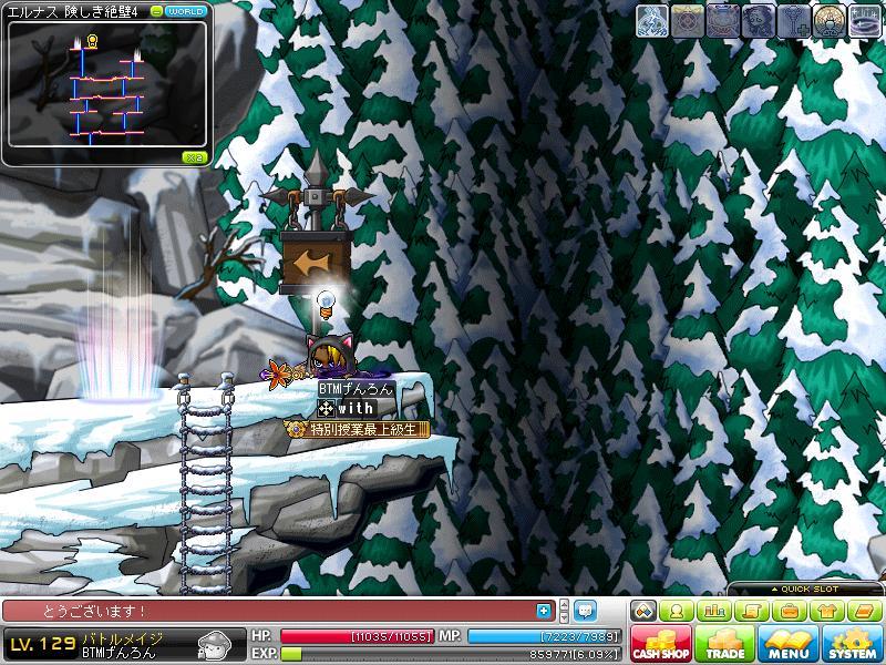 Maple110525_234648.jpg