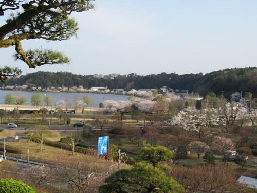 千波湖0001_1