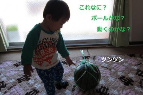 蛻昴せ繧、繧ォ_convert_20130504143311