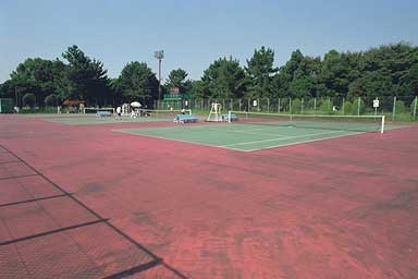 庄内テニスコート-01