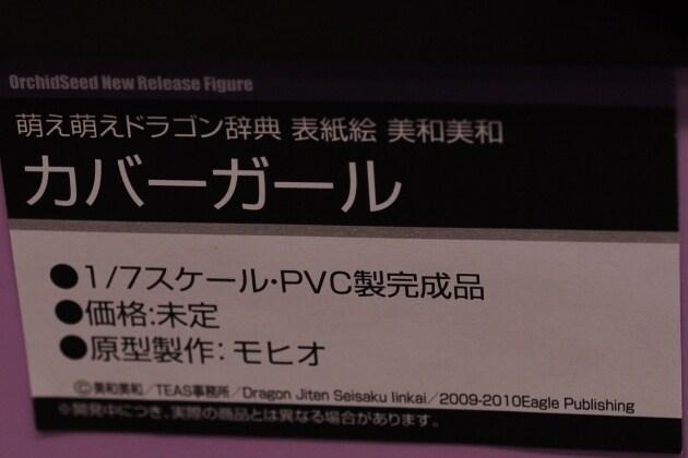 DSC_0933_01.jpg