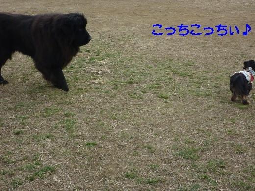 てん駒沢 018加工