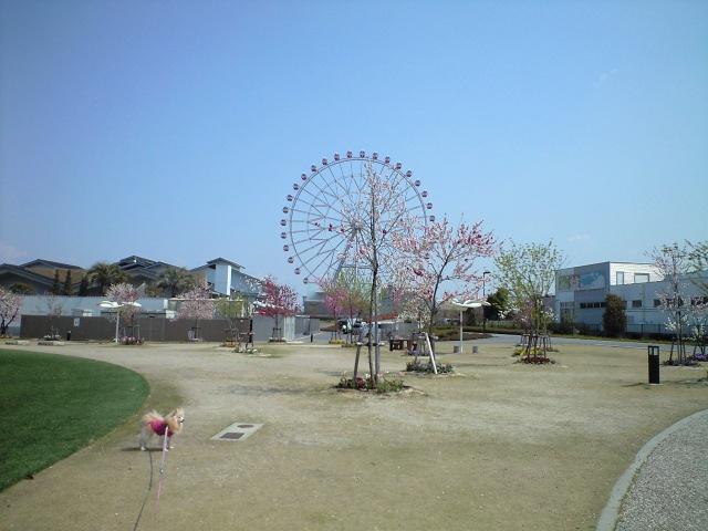 CA3A0534-2012-04-171.jpg