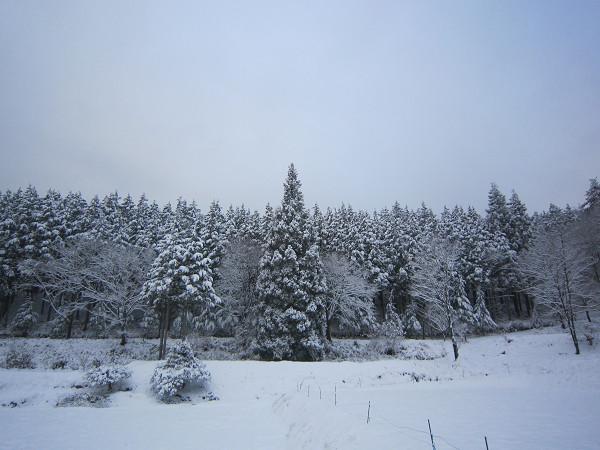 131221-雪の牧戸