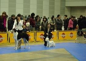 千葉シニア6