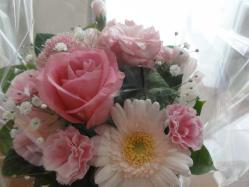 DSC04265花