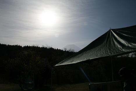 2010050373.jpg