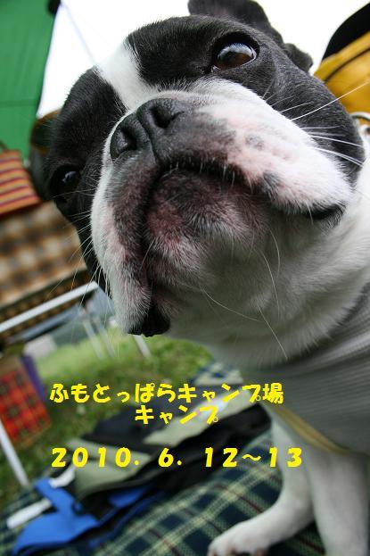 2010061208.jpg
