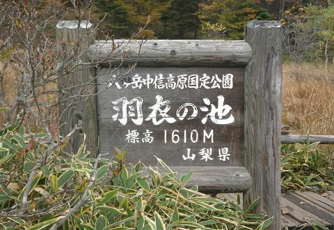 2010102252.jpg
