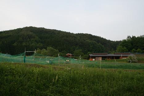 20110603106.jpg