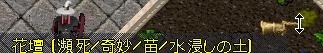 WS003673.JPG