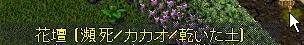 WS003674.JPG