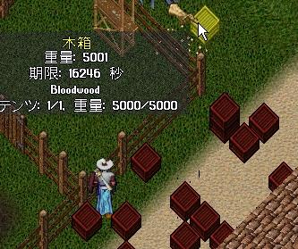 WS003796.JPG