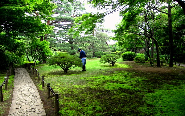 殿ヶ谷庭園