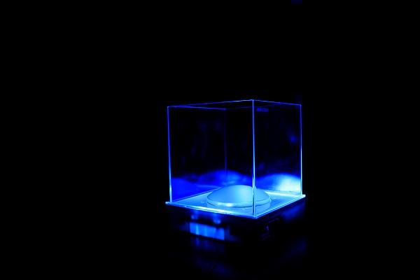 ナイトアクアリウム