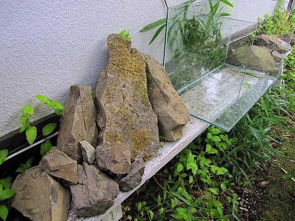 石組みチャレンジ