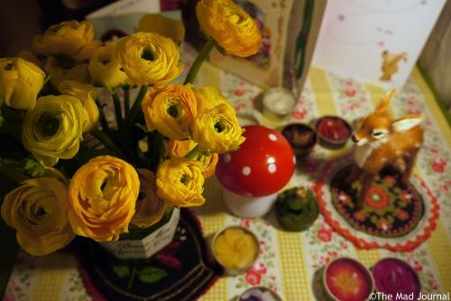 Yellow rananculus