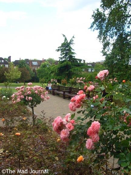 rore garden