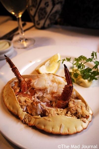 starter crab