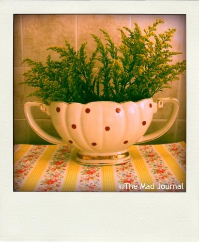 dot flower vase