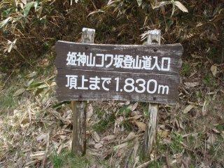 s11コワ坂入口3