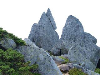 s13熊沢岳山頂1