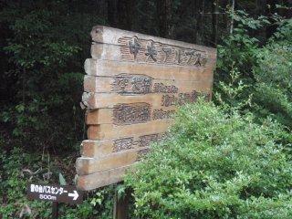 s06登山道入口