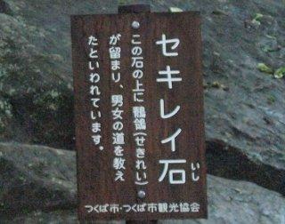sセキレイ石