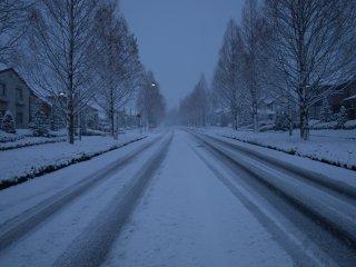 sホワイトクリスマス2