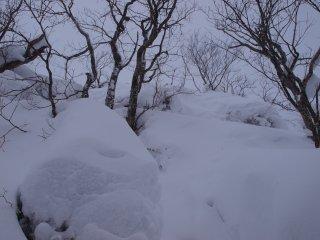s07山頂まで数m