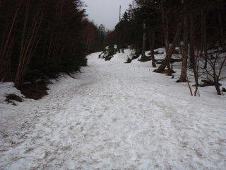 s24雪渓
