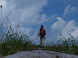 s09湿原を歩く3