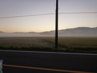 s02朝靄の田んぼ