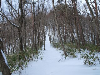 s03登山道