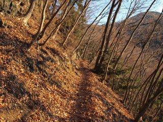 s01緩やかな登山道