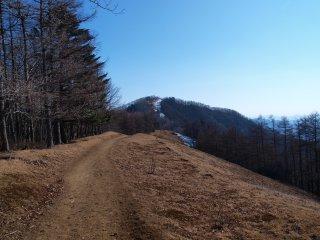 s11七ツ石山へ