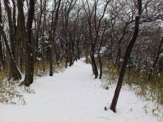s重い雪2