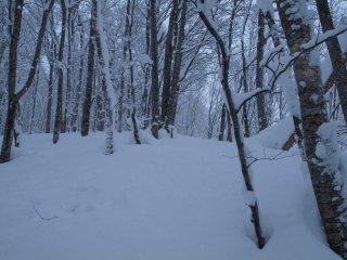 s04深い雪