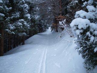 s04急な林道