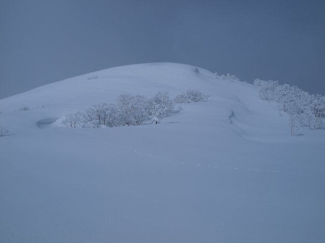 m田代岳山頂周辺4