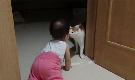 娘とアル(猫)-2