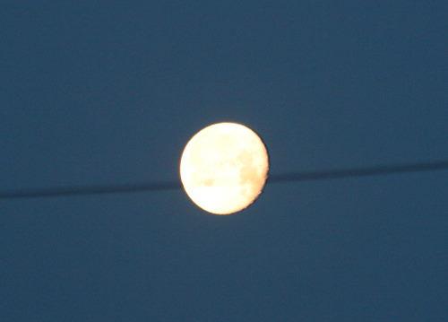 お月さま49