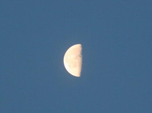 下弦の月413